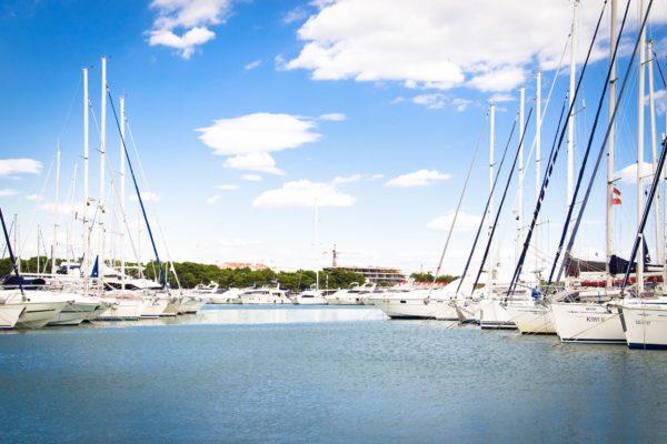 Coque souple ou rigide : le dilemme de l'acheteur de bateau